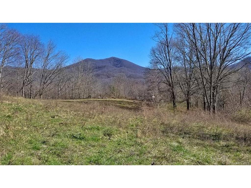 Image 1 for 00 Henry Road in Sylva, NC 28779 - MLS# 3511598