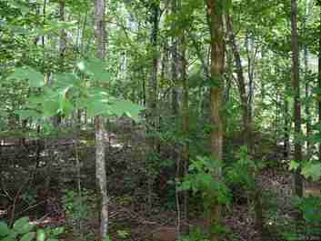 Lot #36 Dublin Lane in Columbus, North Carolina 28722 - MLS# 3514548