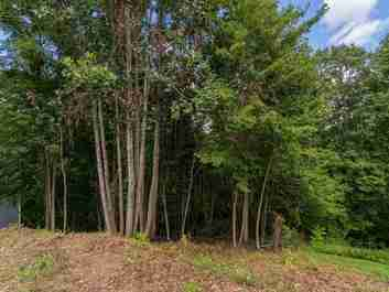 Lot 2420 Carriage Summit Way in Hendersonville, North Carolina 28791 - MLS# 3514844