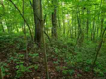 00 Ruffed Grouse Lane #12 in Waynesville, NC 28786 - MLS# 3517743