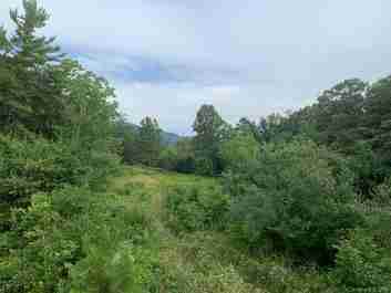 7.41 Ac Off Burney Mountain Road in Fletcher, North Carolina 28732 - MLS# 3523678