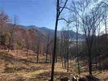 Tbd Betsys Gap Road in Clyde, NC 28721 - MLS# 3525920