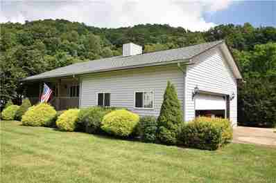 87 Clearwater Drive in Waynesville, NC 28785 - MLS# 3530969