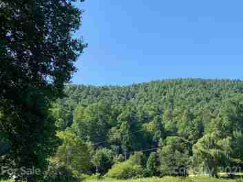 Lot 6 Burgan Pace Road in Saluda, North Carolina 28773 - MLS# 3533211