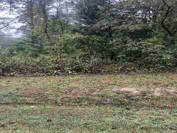 Lot 27 Grand Oaks Drive in Hendersonville, North Carolina 28792 - MLS# 3540686