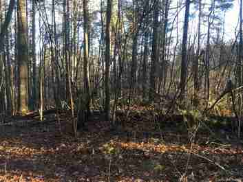 00 White Oak Road in Waynesville, NC 28785 - MLS# 3541885