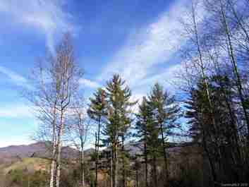 5 Treeline Trail #5 in Waynesville, NC 28785 - MLS# 3543121