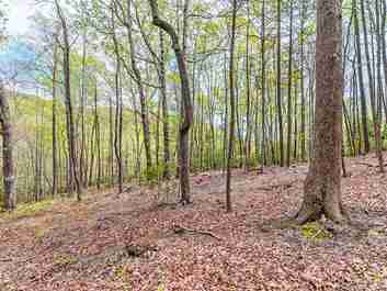 000 Laurel Creek Drive in Hendersonville, North Carolina 28792 - MLS# 3544310