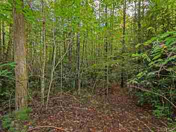 Lt 306 Old Spring Road in Brevard, North Carolina 28712 - MLS# 3560235