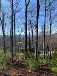 9999 S Mills River Road in Mills River, NC 28759 - MLS# 3561444