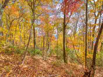 0000 Eagles Nest Road in Waynesville, NC 28786 - MLS# 3564958