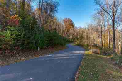 72 Woodland Aster Way #70 in Asheville, North Carolina 28804 - MLS# 3566776