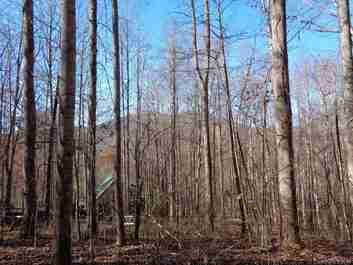 00 Spirit Mountain Trail #30 in Waynesville, NC 28785 - MLS# 3570651