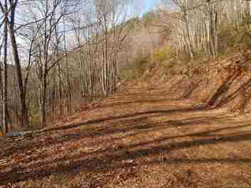 00 Horse Cove Road in Canton, NC 28716 - MLS# 3575493