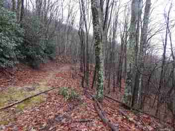 00 Grouse Road #131,132,133,134 in Clyde, NC 28721 - MLS# 3578689