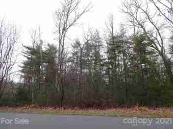 Lot 24 Cedar Hill Drive in Asheville, NC 28803 - MLS# 3582312