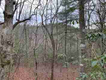9999 Cardinal Road #27 in Brevard, NC 28712 - MLS# 3586620