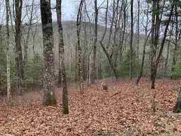 99 Pheasant Lane in Brevard, NC 28712 - MLS# 3586630