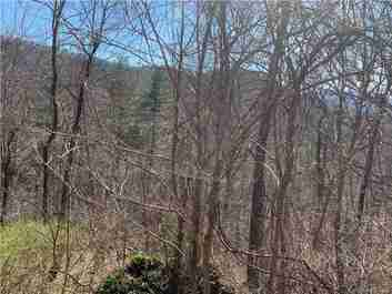 216 Vance Gap Road in Asheville, NC 28804 - MLS# 3600349