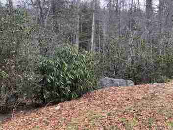 7.67 Ac Off Davis Mountain Road in Hendersonville, NC 28739 - MLS# 3601188