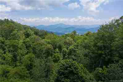 60.43 Acres Off Pot Leg Road in Waynesville, NC 28785 - MLS# 3608804