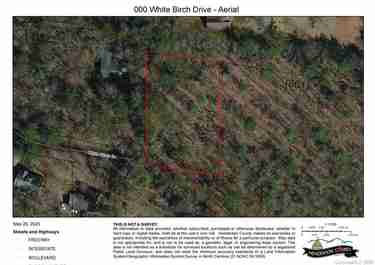 000 White Birch Drive in Mills River, NC 28759 - MLS# 3623073