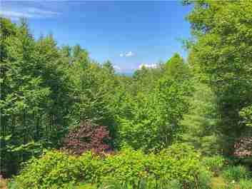 20 Connies Cove in Waynesville, NC 28786 - MLS# 3625079