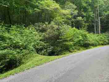 Lots 428 & 428a Chestnut Forest Road in Fairview, NC 28730 - MLS# 3645651