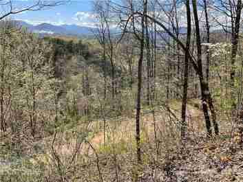 Lot 1 Johnson Farm Road in Canton, NC 28716 - MLS# 3649389
