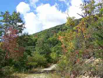 00 Off Fie Top Road in Maggie Valley, NC 28751 - MLS# 395657