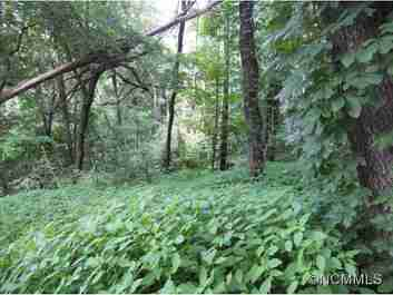 67 Twisted Trail #Lot 67 in Waynesville, NC 28786 - MLS# 483974