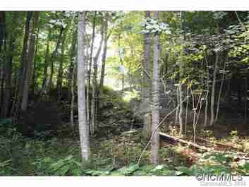 Lot 48 Off Boys Camp Road #48 in Lake Lure, North Carolina 28746 - MLS# 565904