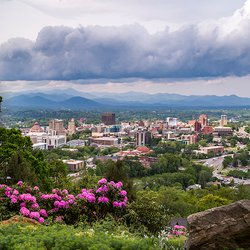 photo of Asheville city center with spring flower in foreground