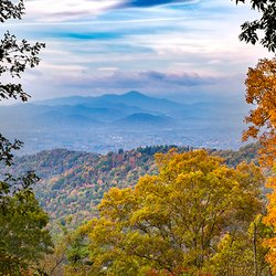 fall photo looking through treeline to colorful blue ridge mountains