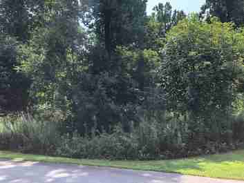 Lot 13 Peregrine Drive in Hendersonville, North Carolina 28739 - MLS# 3428854