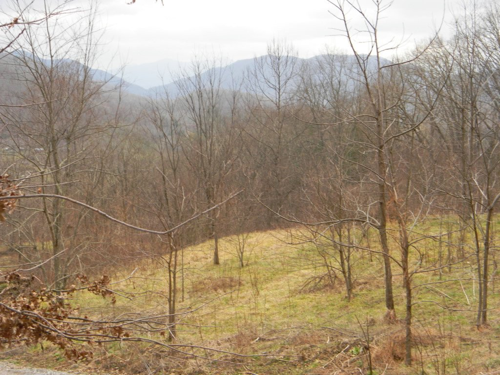 Lot 6 Mosey Mountain Lane in Canton, North Carolina 28716 - MLS# 3146490