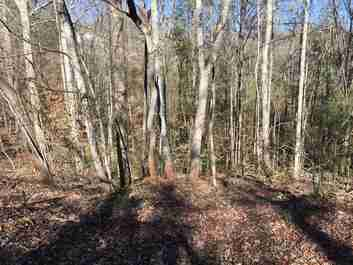 Lot 29 Tar Heel Drive #29 in Mars Hill, North Carolina 28754 - MLS# 3146589
