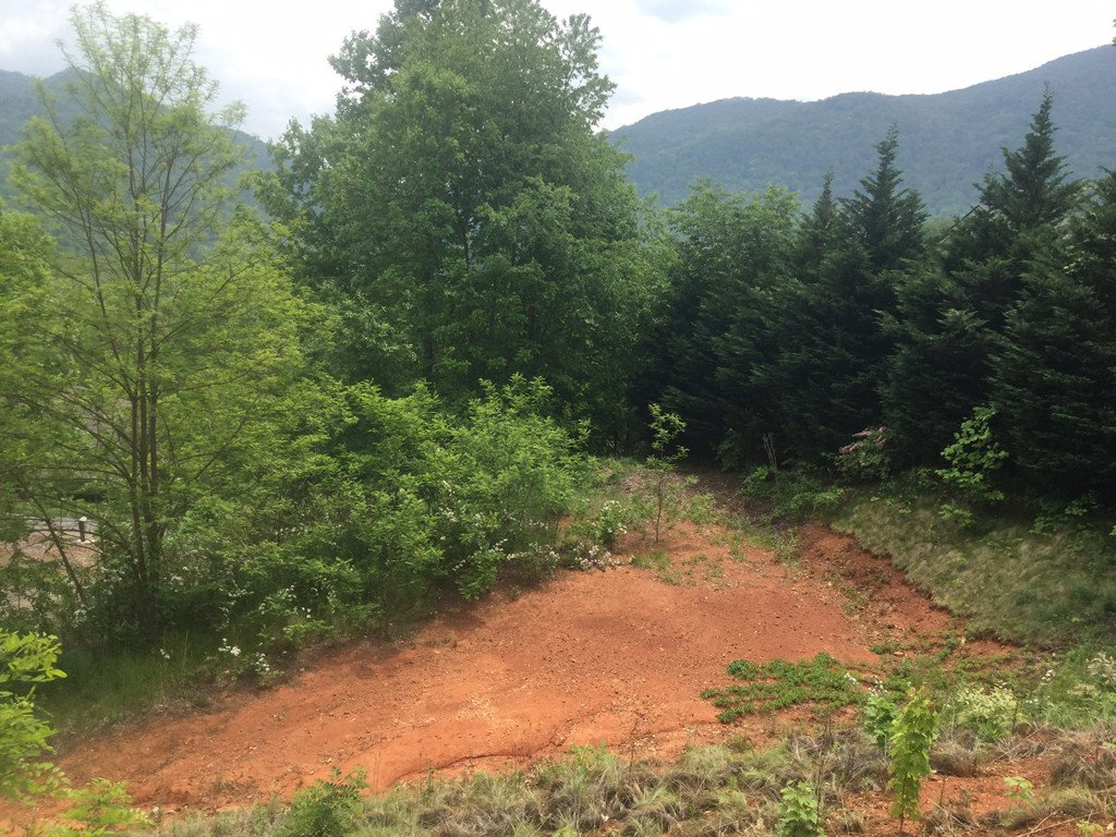 200 Hawks Crest Drive in Waynesville, North Carolina 28786 - MLS# 3175444