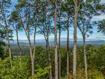 646 Pinnacle Mountain Road #60.5 acres in Zirconia, North Carolina 28790 - MLS# 3209270