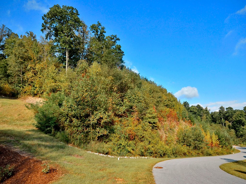 Lot 1904 Bay Laurel Lane in Hendersonville, North Carolina 28791 - MLS# 3219169