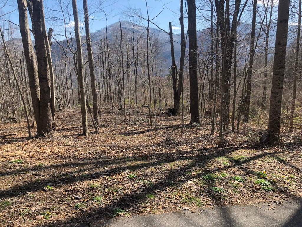 Lot 14 & 14a Blackberry Lane in Maggie Valley, North Carolina 28751 - MLS# 3219382