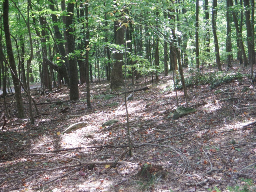 Lot 324 Big Rock Lane in Lake Lure, North Carolina 28746 - MLS# 3221849