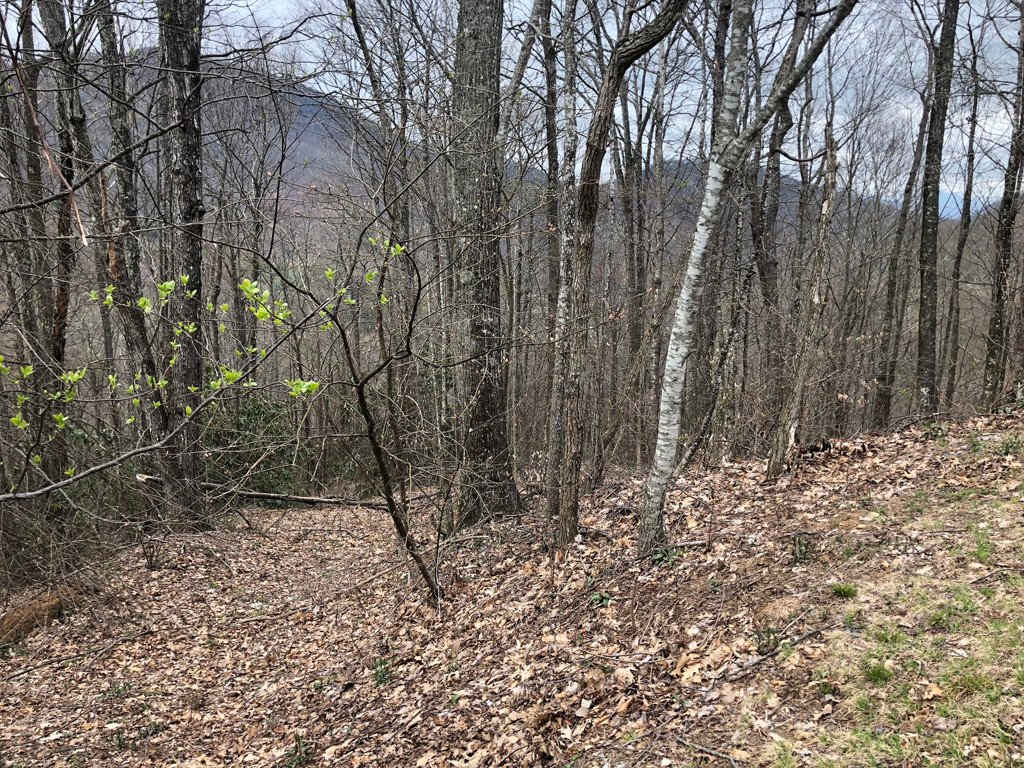 Lot 124 Ramp Patch Lane in Waynesville, North Carolina 28786 - MLS# 3308344
