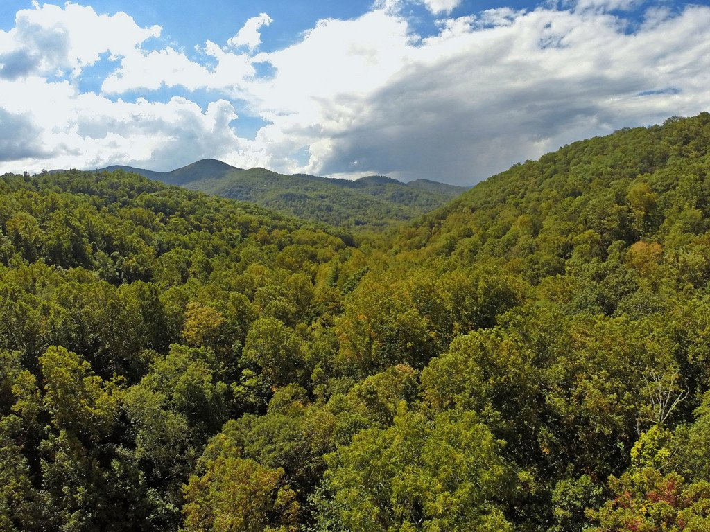 999999 Cook Cove Road #4 in Weaverville, North Carolina 28787 - MLS# 3323588