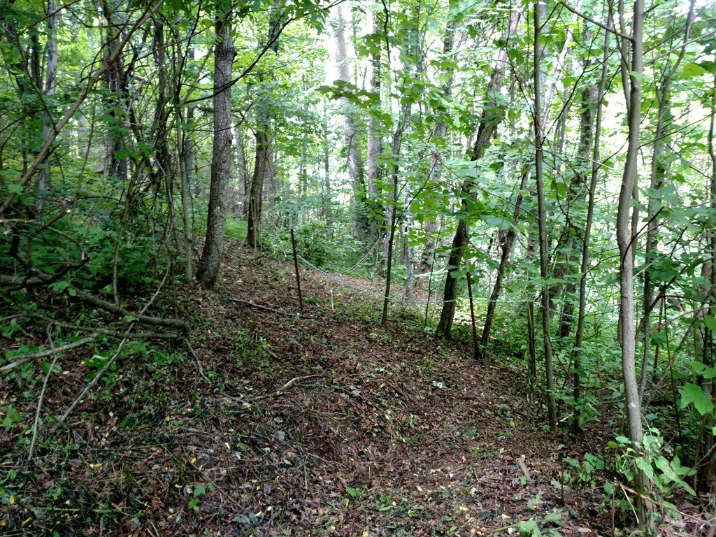 Lots 116 & 117 Spellbound Road in Waynesville, North Carolina 28785 - MLS# 3324938