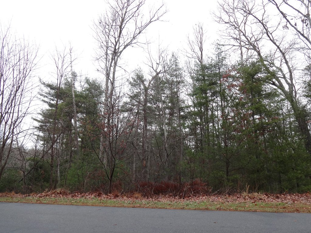 Lot 24 Cedar Hill Drive in Asheville, North Carolina 28803 - MLS# 3354154