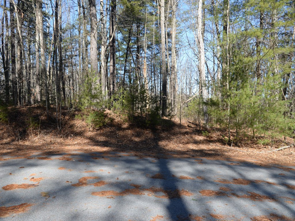 84 Summer Shade Court #54 in Hendersonville, North Carolina 28792 - MLS# 3363962