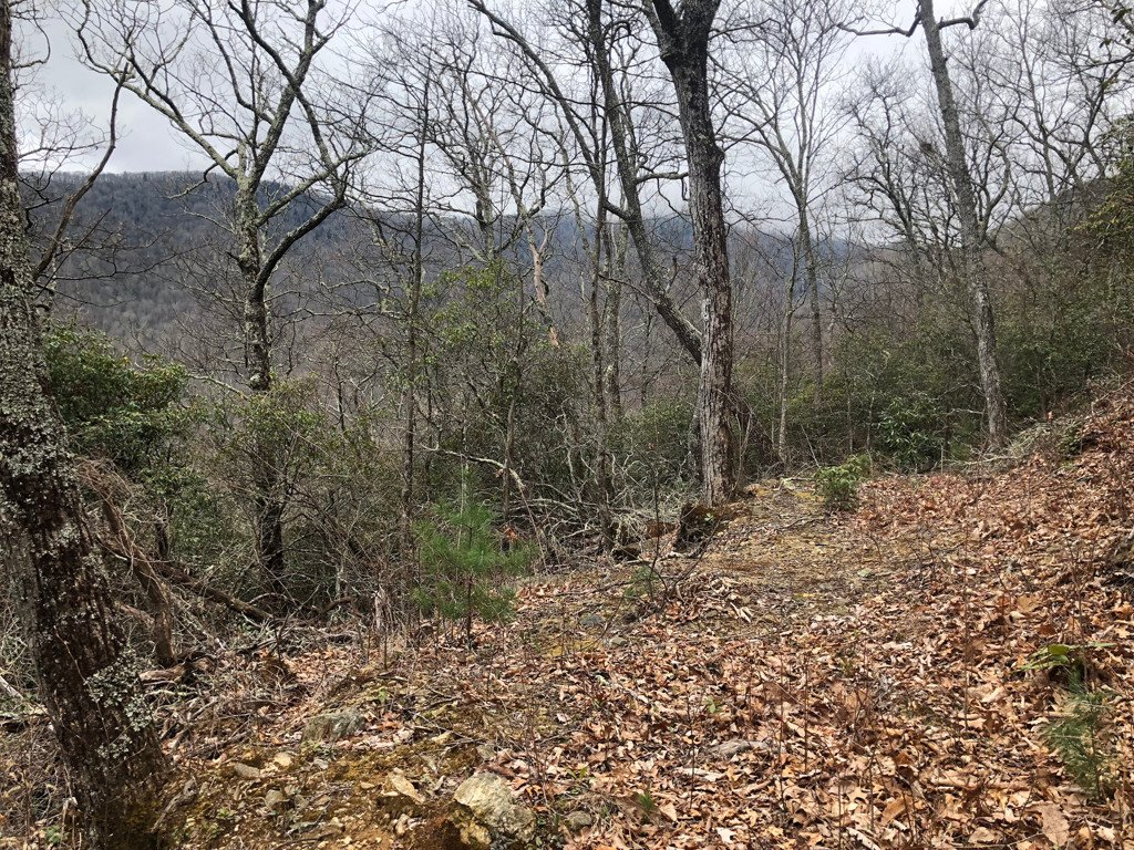 Lot 287 Running Deer Trail in Waynesville, North Carolina 28786 - MLS# 3374948