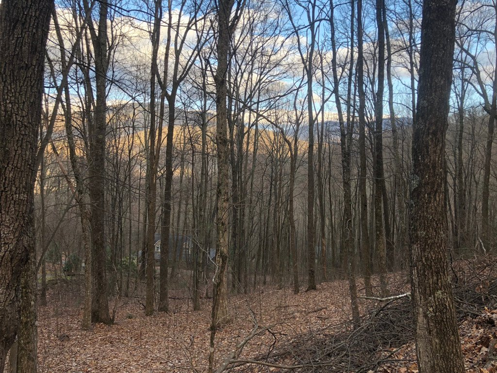 Lot 3 Libbies Lane #3 in Waynesville, North Carolina 28786 - MLS# 3378818