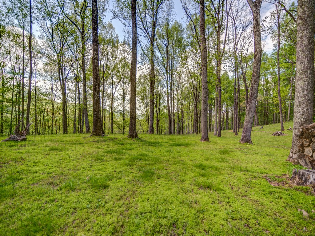 Lot 7 Powder Springs Trail in Arden, North Carolina 28704 - MLS# 3385688